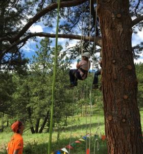 Avid 4 Adventure Summer Camp Tree Climb
